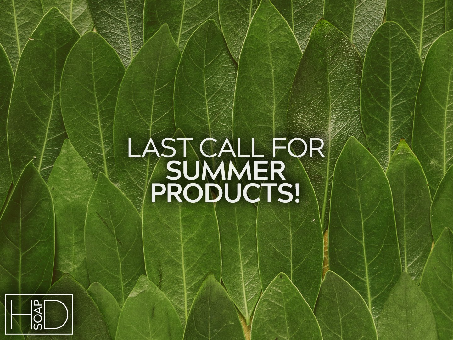 Summer Products