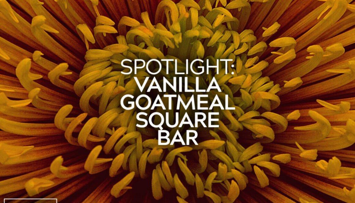 Vanilla Goatmeal Square Bar