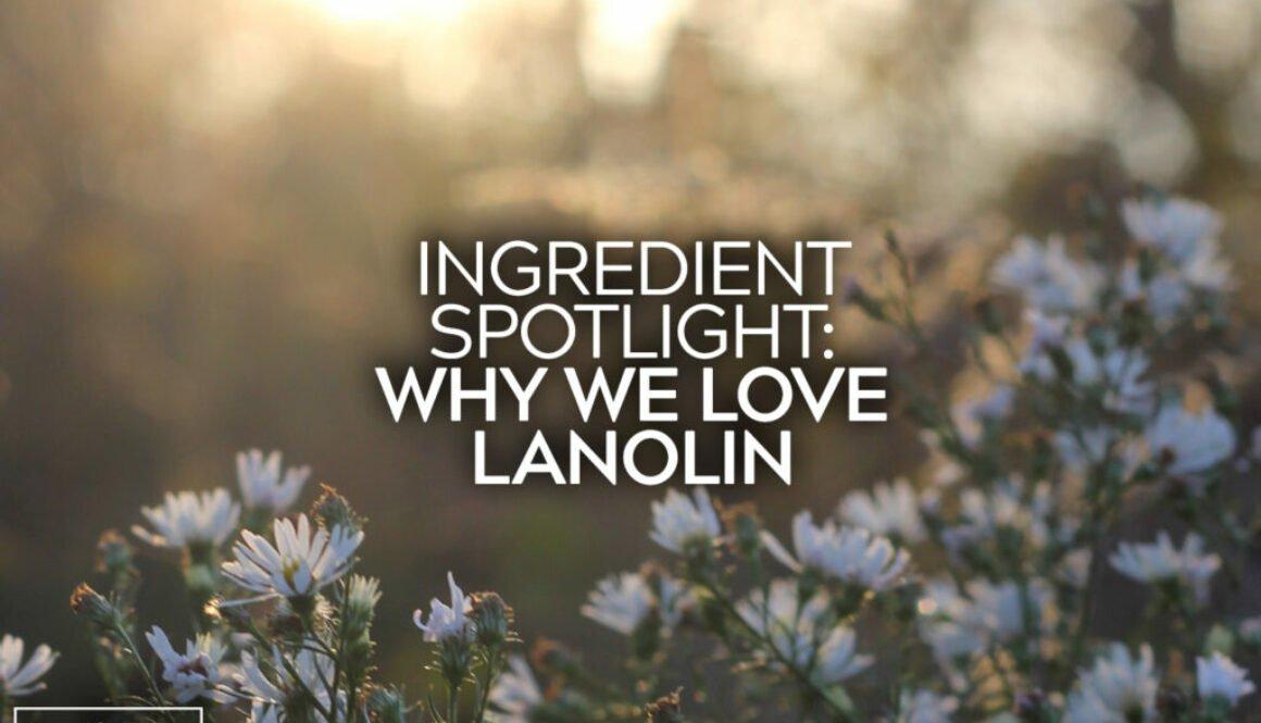 Why We Love Lanolin
