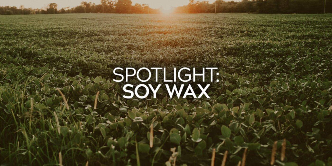 Soy Wax