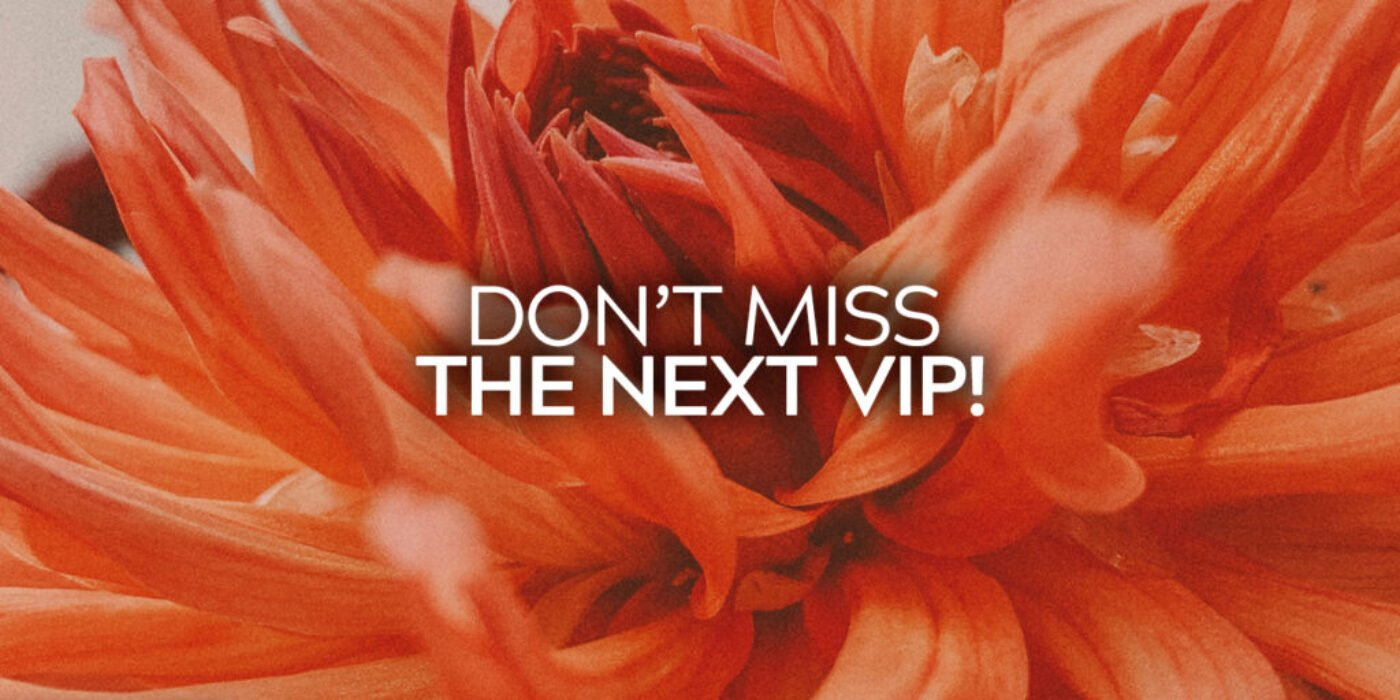 Don't Miss The Next VIP
