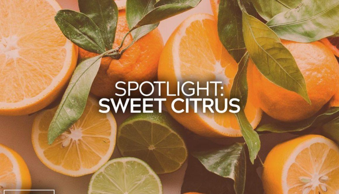 Aromatherapy Sweet Citrus Blog Title
