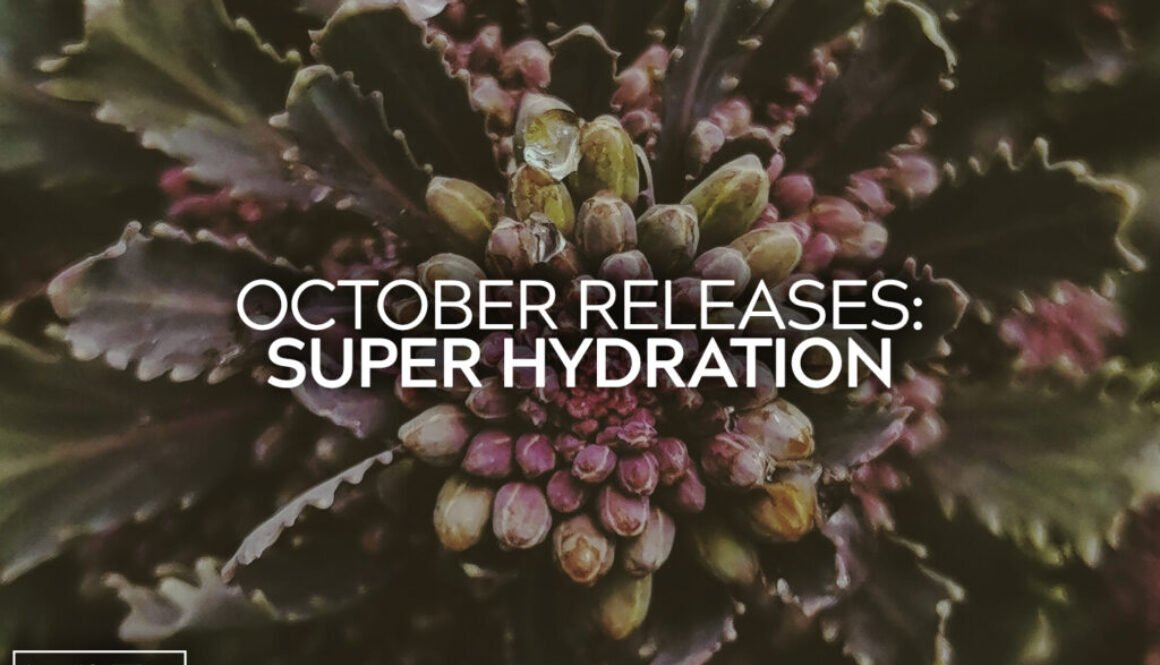 October New Releases 3