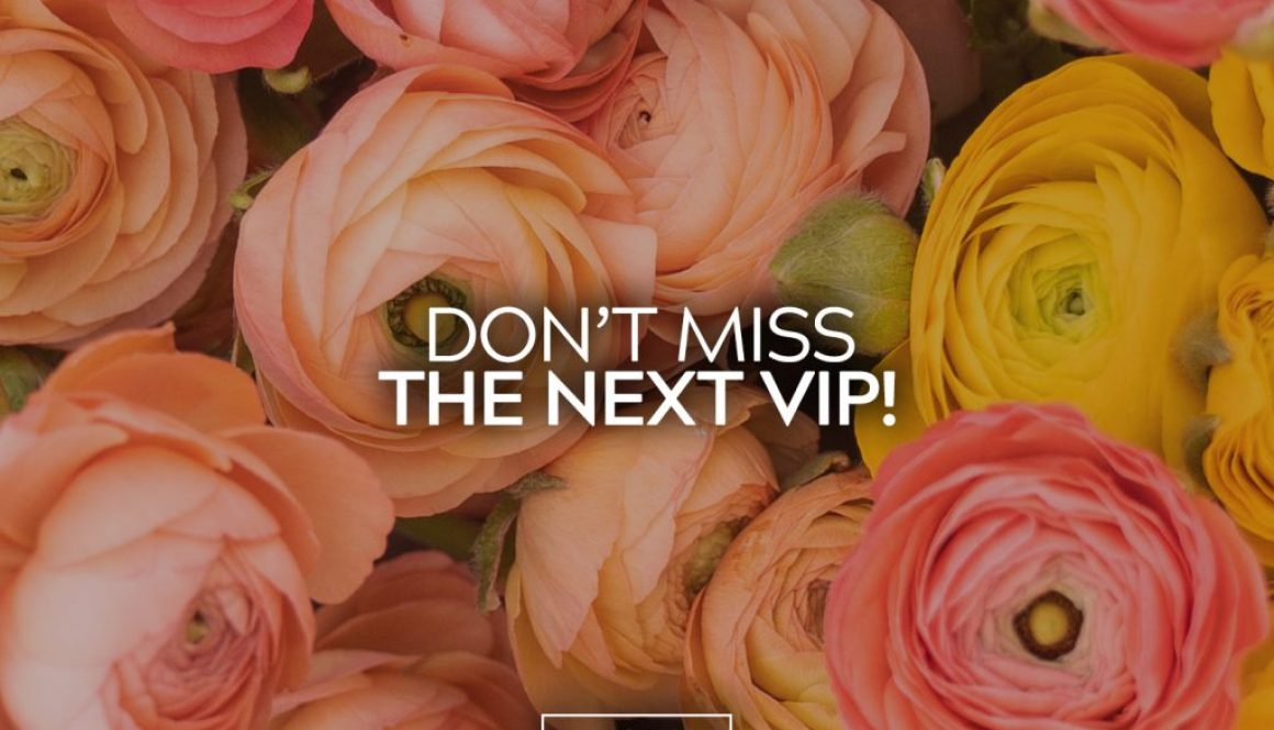VIP Deadline 11