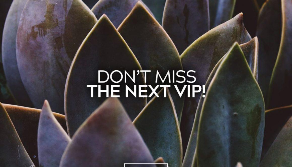 VIP Deadline 12