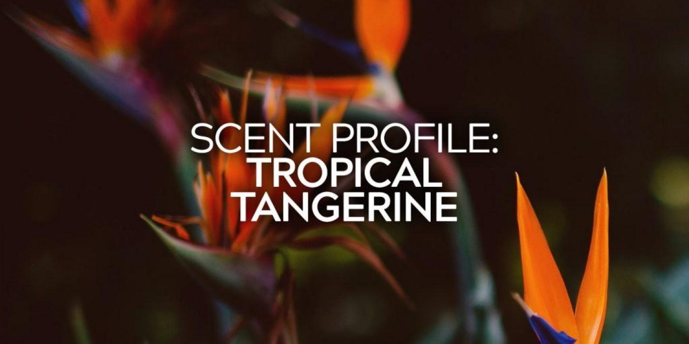 Tropical Tangerine