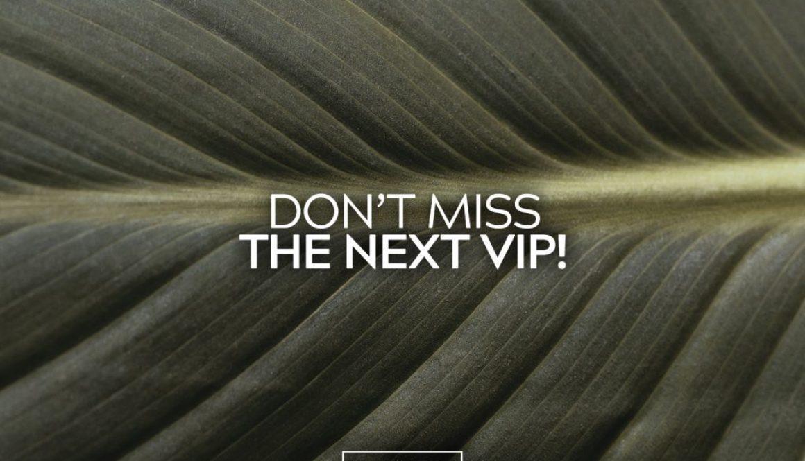VIP Deadline 15 copy