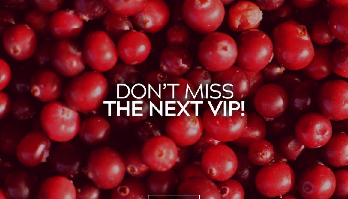 VIP Deadline 16
