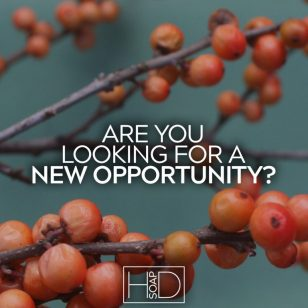 Consultant Opportunity